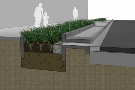 Rain Garden: la nuova frontiera delle aiuole urbane